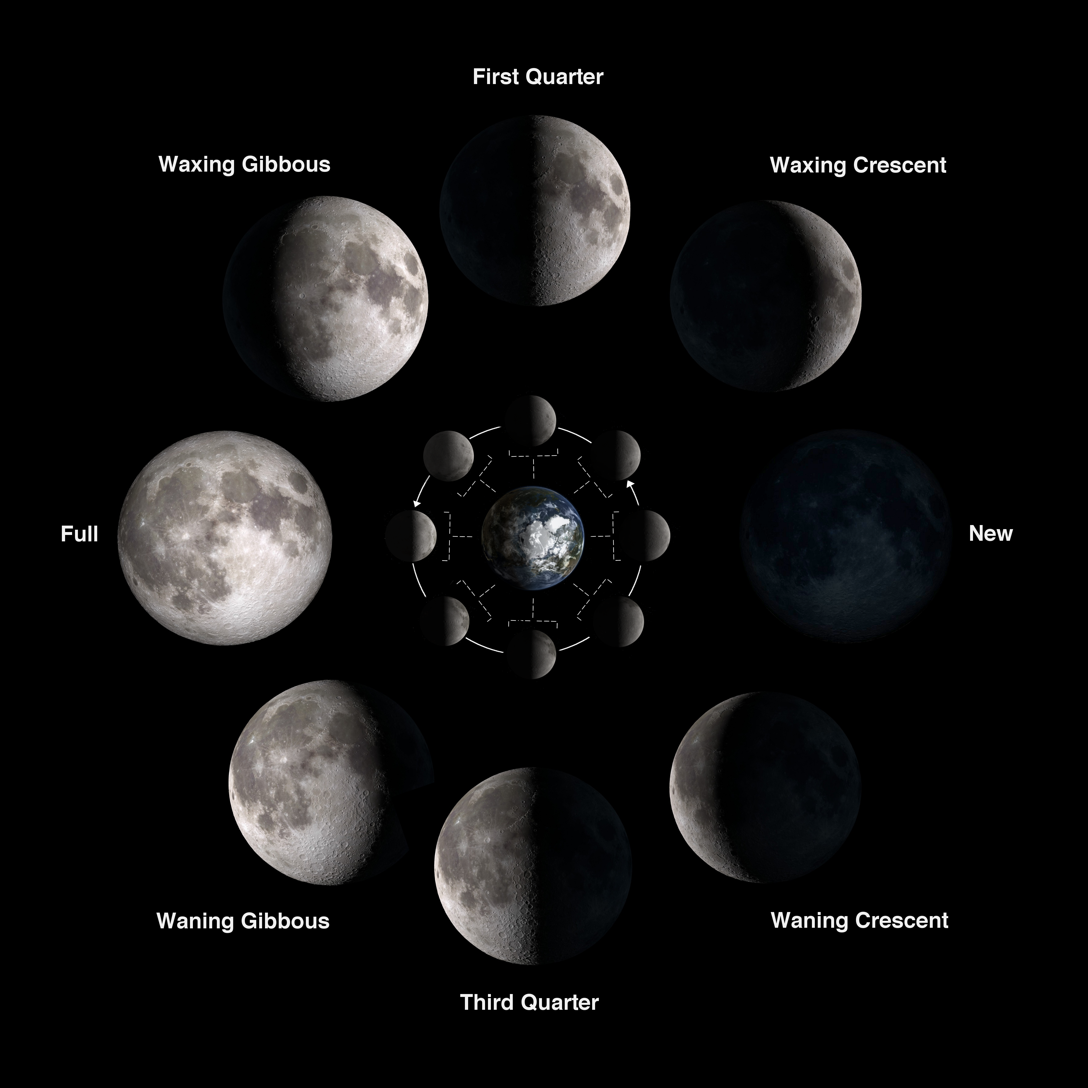 Illustration showing phases on the moon.